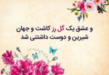 جملات زیبا و عاشقانه در وصف گل رز