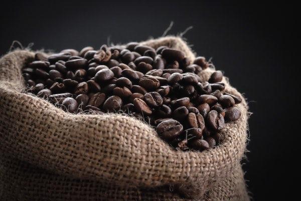 رنگ قهوه ای نماد و نشانه چیست؟