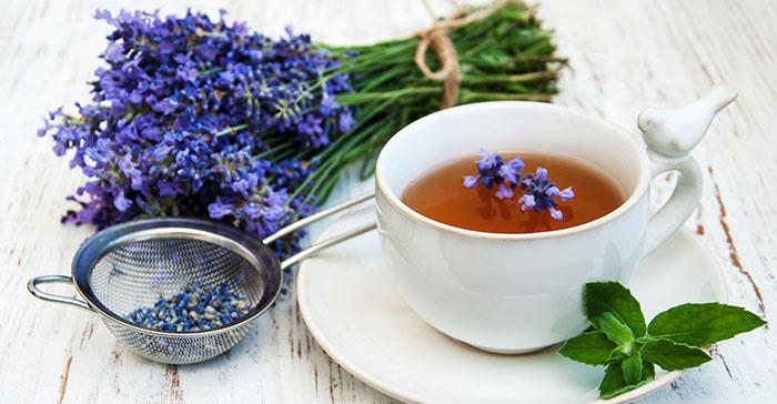 فواید دارویی و درمانی چای اسطوخودوس