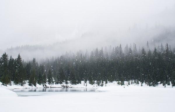 انشای زمستان را توصیف کنید