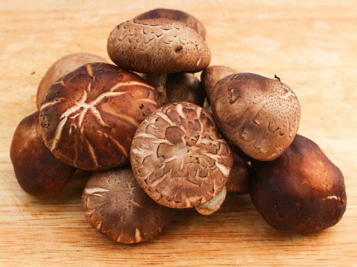 خواص دارویی قارچ شیتاکه چیست