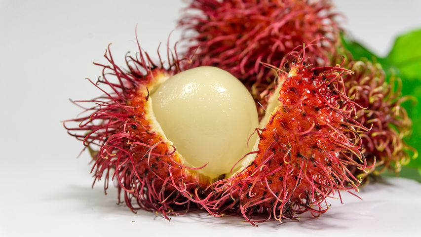 خواص درمانی میوه رامبوتان