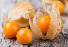 خواص میوه فیسالیس زرد یا عروسک پشت پرده