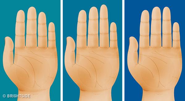 شخصیت شناسی از روی انگشت ها