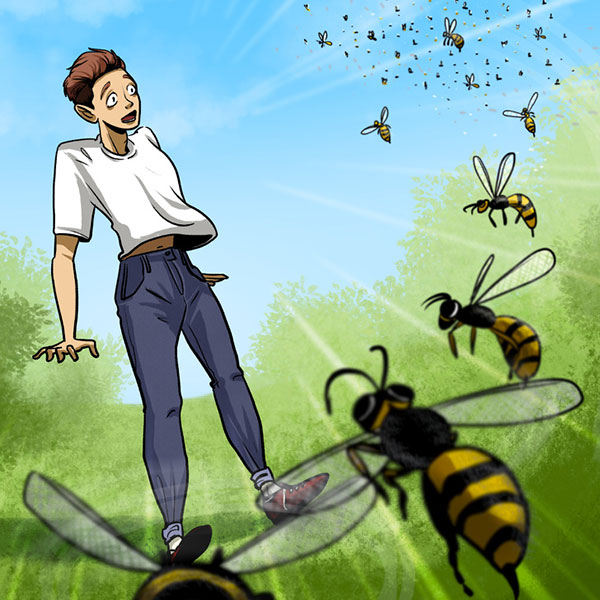 اگر زنبور ها به شما حمله کردند چه کنید؟