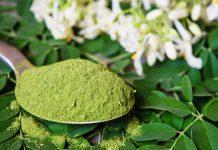 خواص گیاه دارویی مورینگا اولیفرا چیست؟
