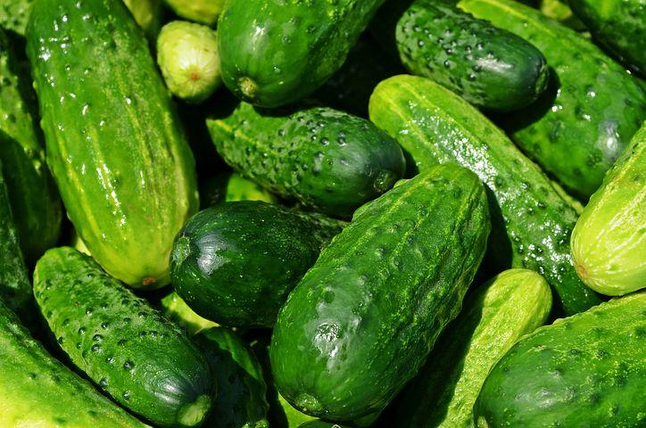 آیا خیار میوه است یا سبزی؟