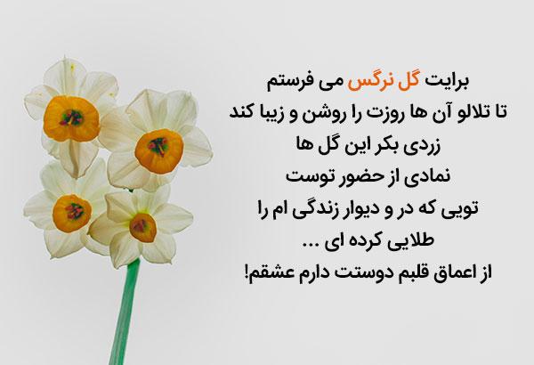 متن زیبا و عاشقانه گل نرگس
