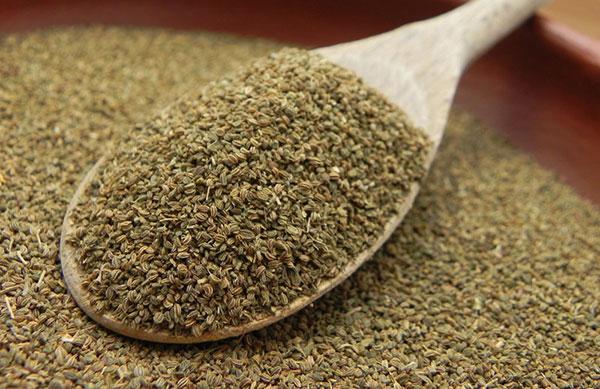 خواص دانه یا بذر کرفس
