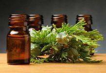 خواص درمانی روغن درخت سرو