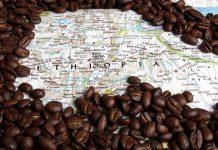 همه چیز درباره قهوه اتیوپی