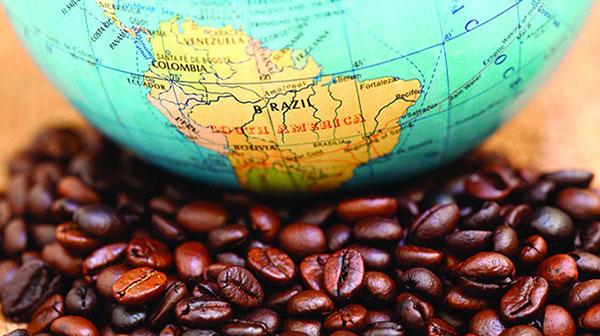دانستنی های جالب درباره قهوه برزیل