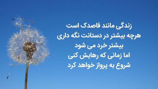 متن ادبی و قشنگ درباره قاصدک