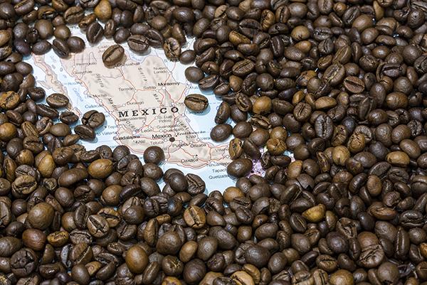 قهوه مکزیک