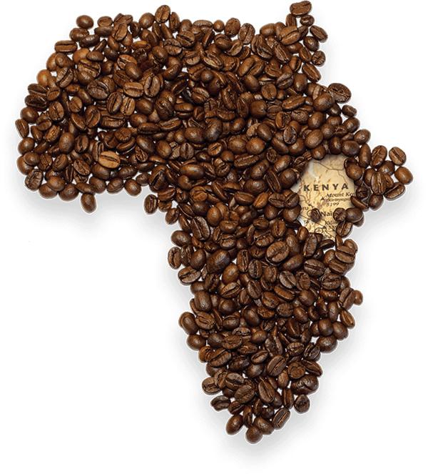 همه چیز درباره قهوه کنیا