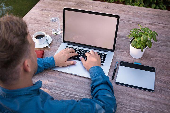گیاهان مناسب دفتر و میز کار