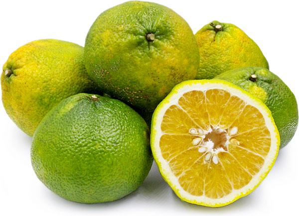 عکس میوه اوگلی