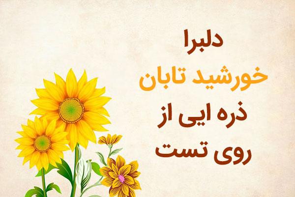 برترین غزلیات خاجوی کرمانی
