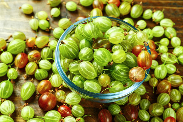 خواص انگور فرنگی