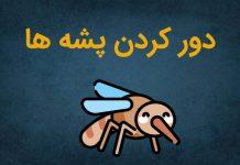پشه ها از چی متنفرند؟