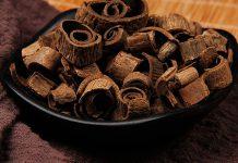 خواص دارویی پوست درخت ماگنولیا برای سلامتی