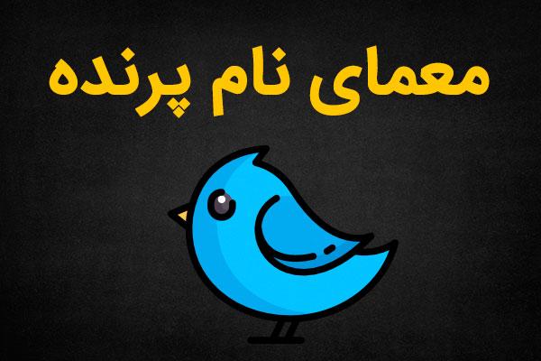 پرنده ای که نام دو شهر مذهبی ایران را دارد؟