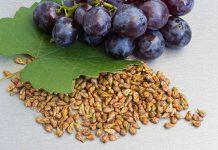 فواید و مضرات دانه انگور چیست؟