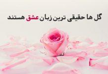 کپشن گل و عشق
